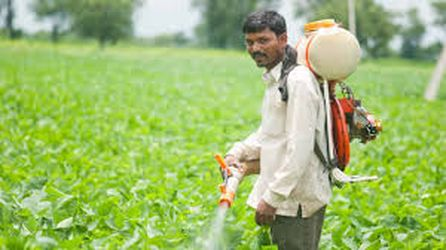 Expert advice needed for pesticide management bill
