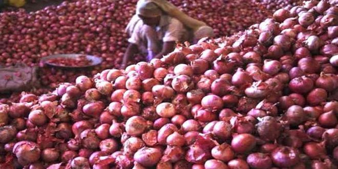 Sharad Pawar slams Center for import-export policy of onions