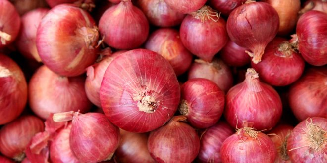 Bumper crop of onion, government will create buffer stock