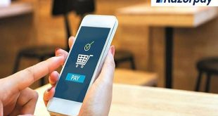 RazorPay Gateway launches checkout page in Hindi