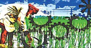 ग्रामीण अर्थव्यवस्था में असमान वृद्धि